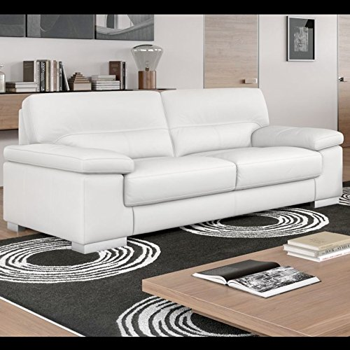 leder couchgarnitur leder sofa sofagarnitur 2 sitzer wohnlandschaft ledergarnitur m bel24. Black Bedroom Furniture Sets. Home Design Ideas