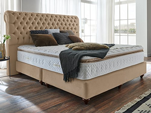 boxspringbett 180x200 beige velour montana hotelbett doppelbett matratze topper modern luxusbett. Black Bedroom Furniture Sets. Home Design Ideas