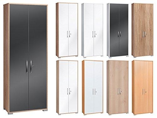 aktenschrank aufbewahrungsschrank b roschrank schrank b ro. Black Bedroom Furniture Sets. Home Design Ideas